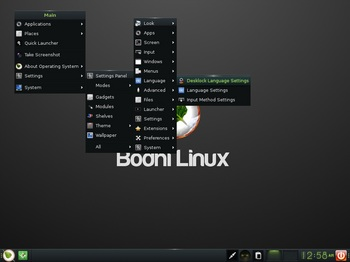 VirtualBox_BodhiLinux40_30_10_2016_00_58_55.jpg