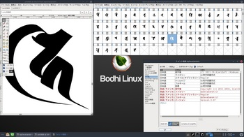 VirtualBox_BodhiLinux410_13_03_2017_11_50_17.jpg