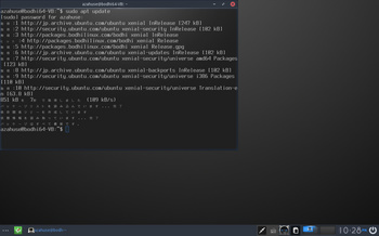 VirtualBox_BodhiLinux420_31_05_2017_22_28_27.jpg