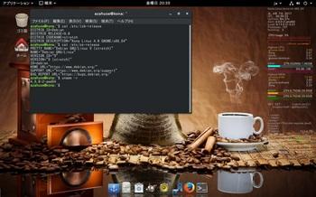 VirtualBox_KonaLinux4G_07_04_2017_20_39_34.jpg