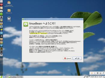 VirtualBox_LinuxBean_30_01_2018_13_27_38.jpg