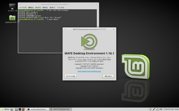 VirtualBox_LinuxMint181M_27_11_2016_10_48_28.jpg