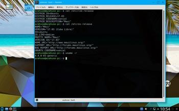 VirtualBox_Maui_05_03_2017_10_54_28.jpg