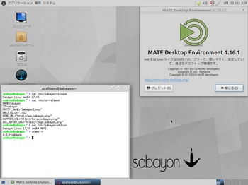 VirtualBox_Sabayon1701_01_03_2017_02_20_32.jpg