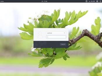 VirtualBox_Solus_18_04_2017_17_56_22.jpg