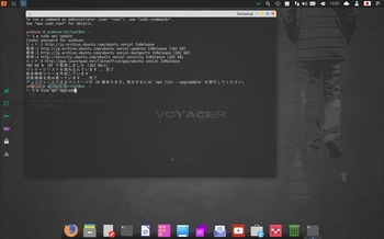 VirtualBox_Voyager_10_03_2017_13_03_32.jpg