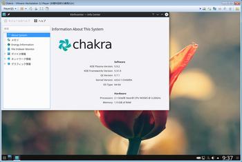 chakra06.jpg