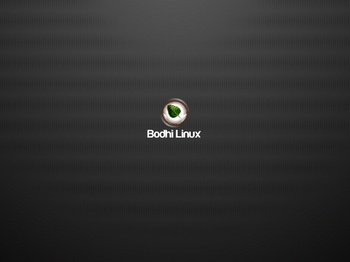 VirtualBox_BodhiLinux410_28_01_2017_01_47_06.jpg
