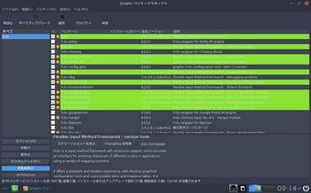 VirtualBox_BodhiLinux410_28_01_2017_09_14_38.jpg