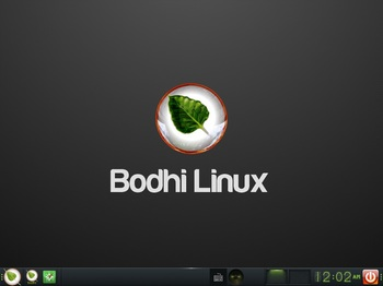 VirtualBox_BodhiLinux4J_01_11_2016_00_02_35.jpg