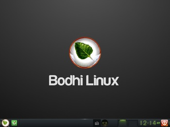 VirtualBox_BodhiLinux4J_01_11_2016_00_14_32.jpg