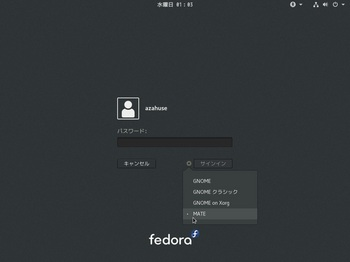 VirtualBox_Fedora25_23_11_2016_01_03_28.jpg