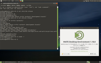 VirtualBox_ubuntu-MATE1710_28_07_2017_18_22_08.jpg